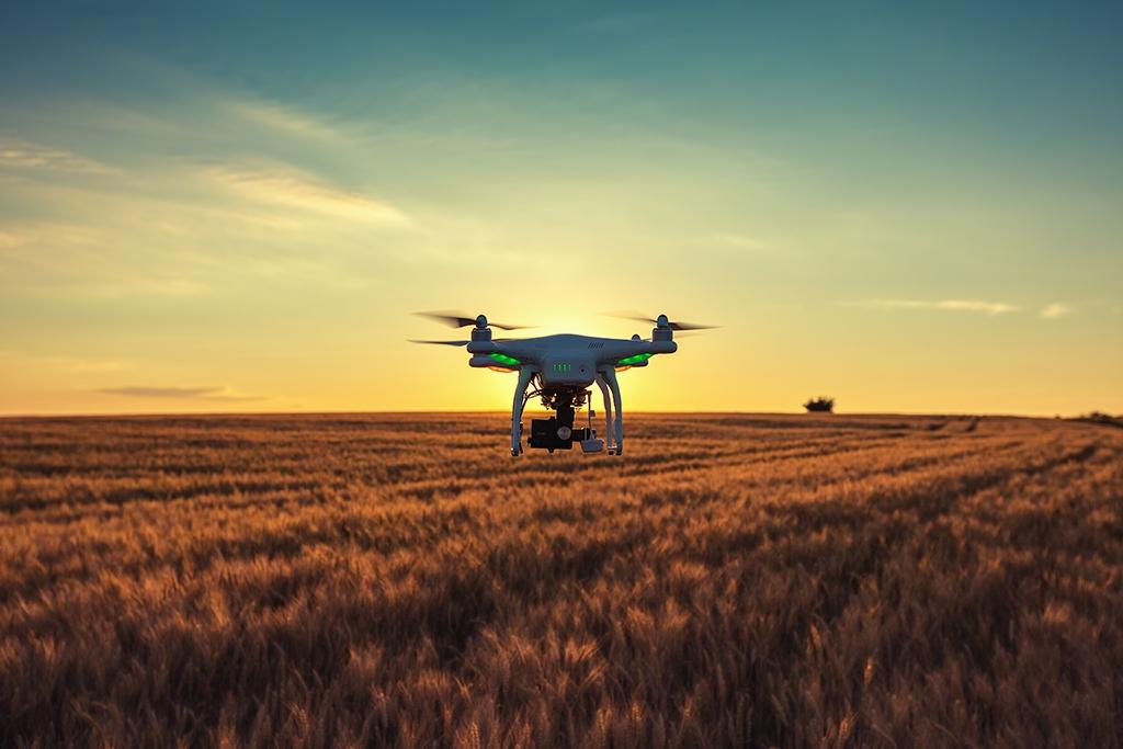 La Transformación Digital en el campo: mucho más que esos 'aparatitos' modernos