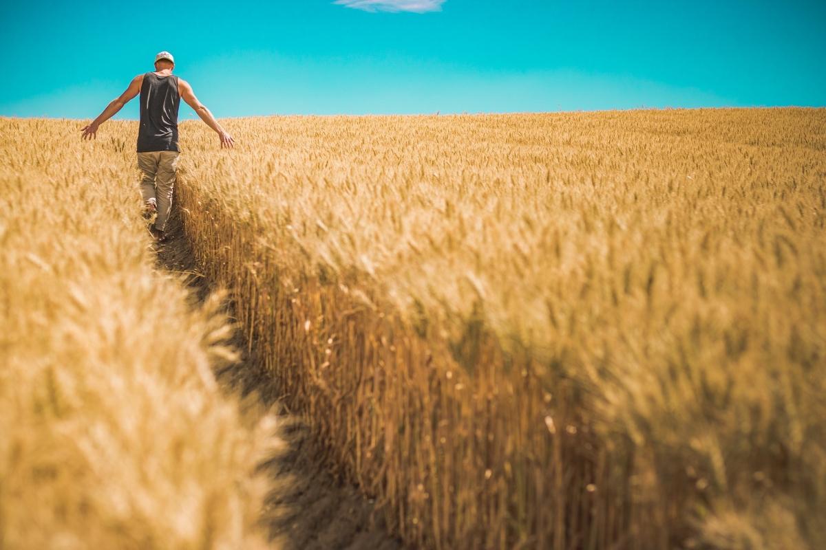 5 prejuicios a los que te enfrentarás como joven agricultor