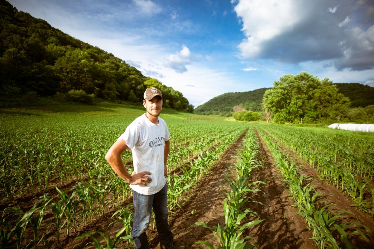 Los 10 errores más comunes en los primeros años como agricultor/a