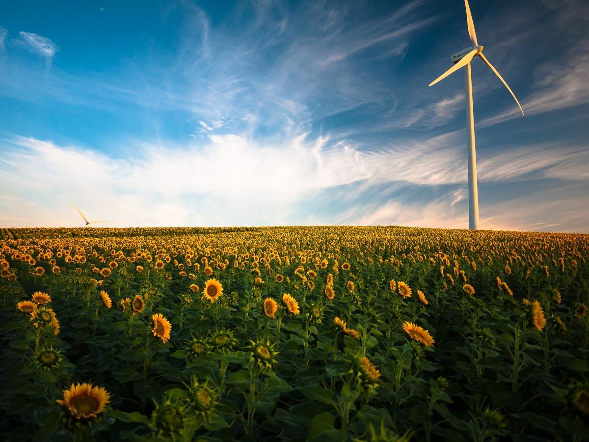 Agricultura y cambio climático, tres papeles en un único escenario