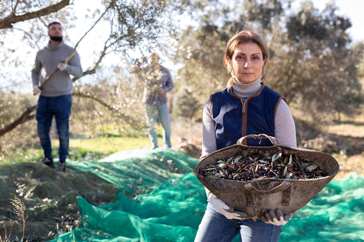 Mujeres emprendedoras en el mundo rural, de las palabras a los hechos