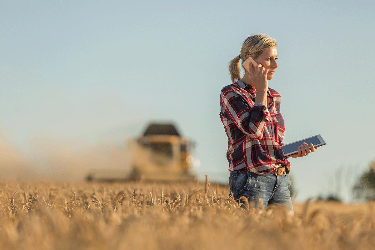 Cultivos emergentes, ¿nuevas opciones para recuperar la rentabilidad agraria?