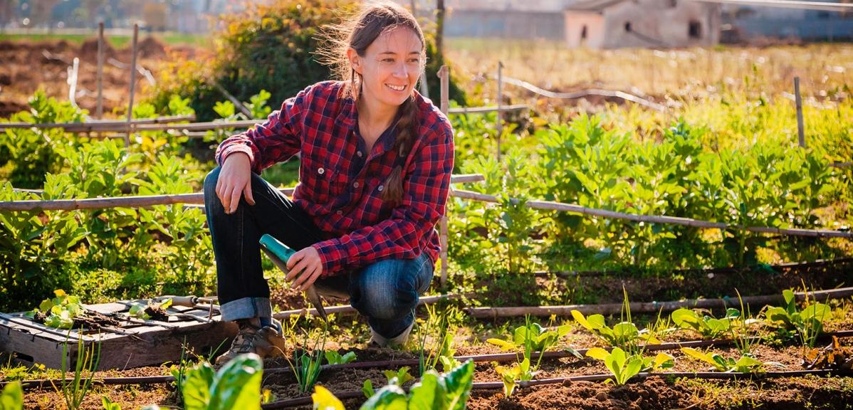 """""""Eco-esquemas de la PAC"""". Qué son y cómo pueden influir en la ayuda que recibes"""